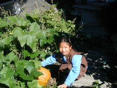 Kaelin checking the growth of her pumpkin
